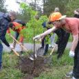 ОК РУСАЛ подвел итоги конкурса экологических проектов «Зелёная волна».